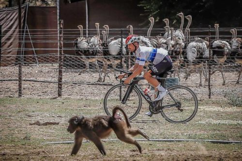 https://www.ridley-bikes.com/campenaerts-namibia/